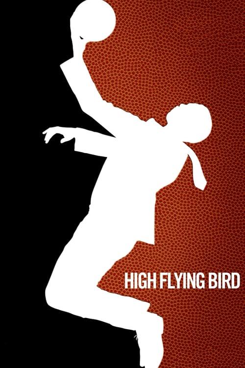 Vysoko letící pták online