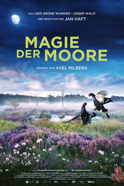 Magie der Moore online