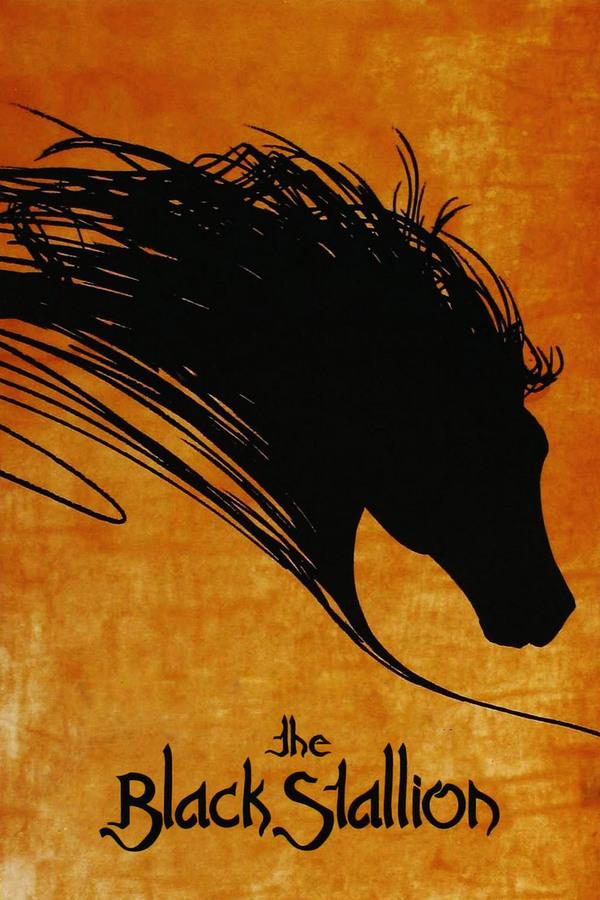 Černý hřebec online