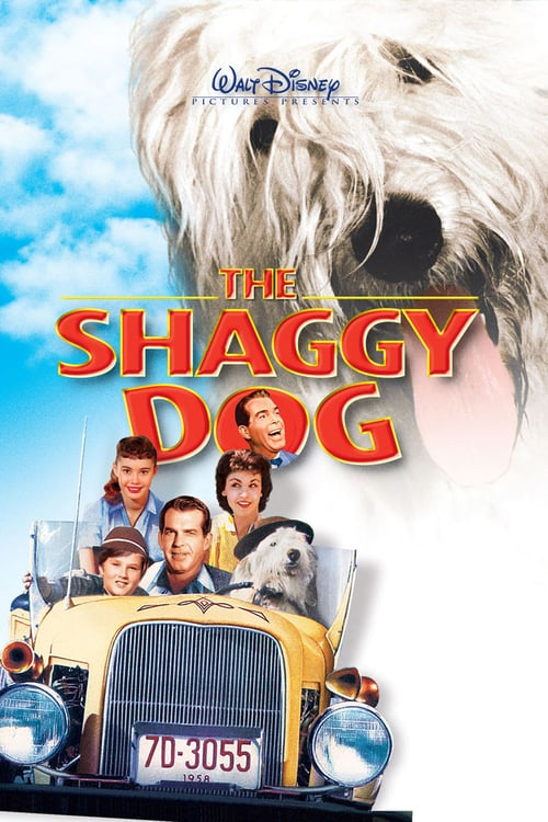 The Shaggy Dog online