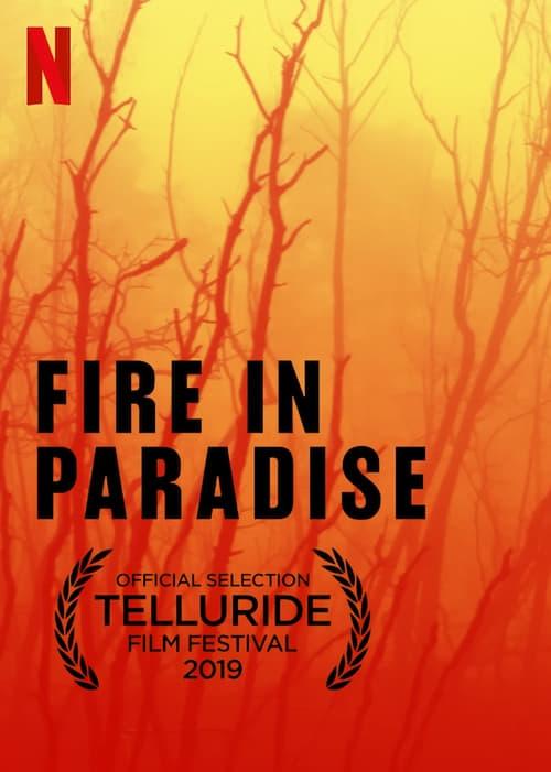 Paradise v plamenech online