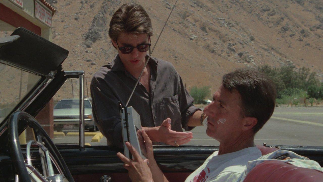 Rain Man - Tržby a návštěvnost