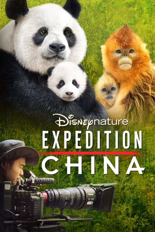 Expedition China online