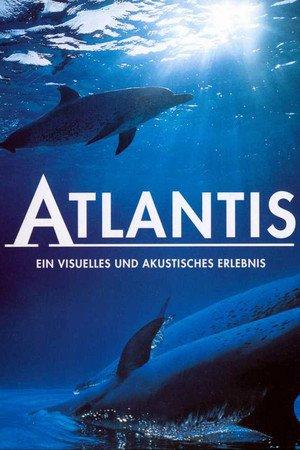 Atlantis - Tržby a návštěvnost