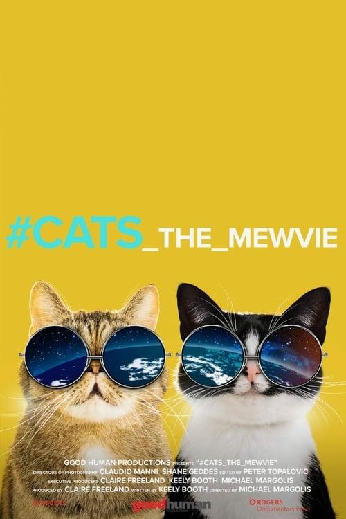 #cats_the_mewvie online