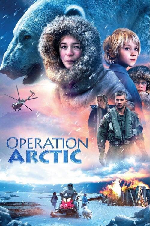 Akce Arktida online