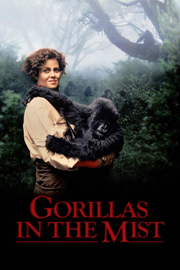 Gorily v mlze online