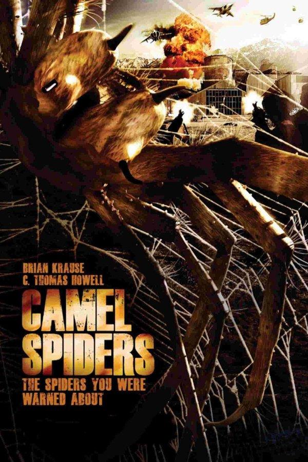 Camel Spiders online