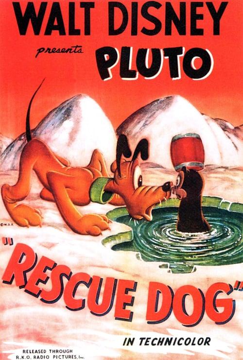 Rescue Dog online