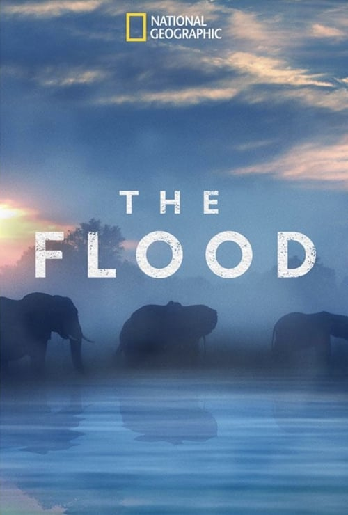 The Flood online
