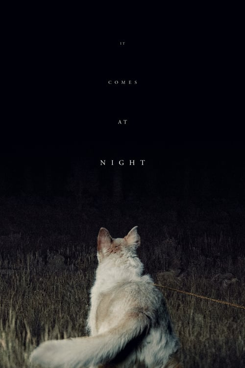 It Comes at Night online