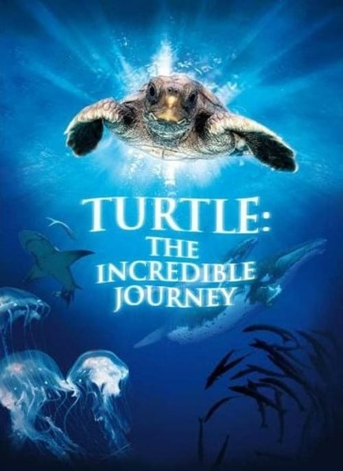 Turtle: The Incredible Journey online