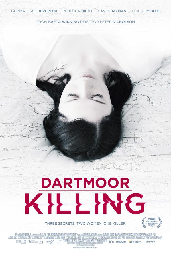 Dartmoor Killing online