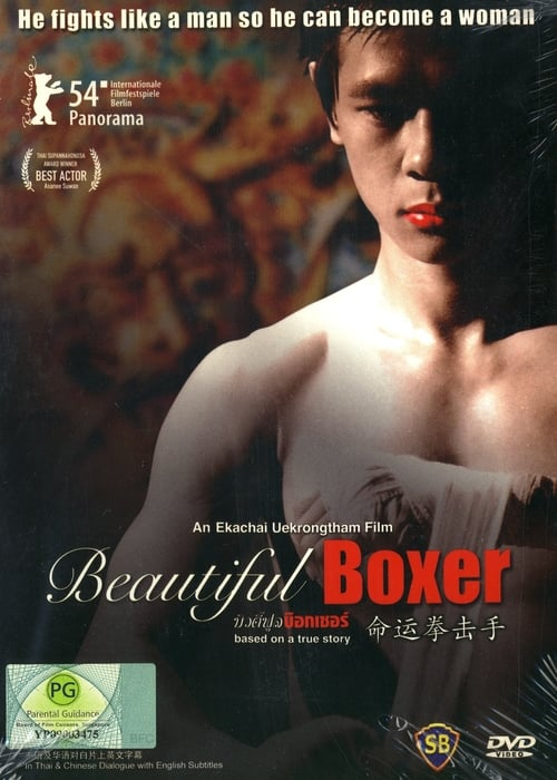 Beautiful Boxer online