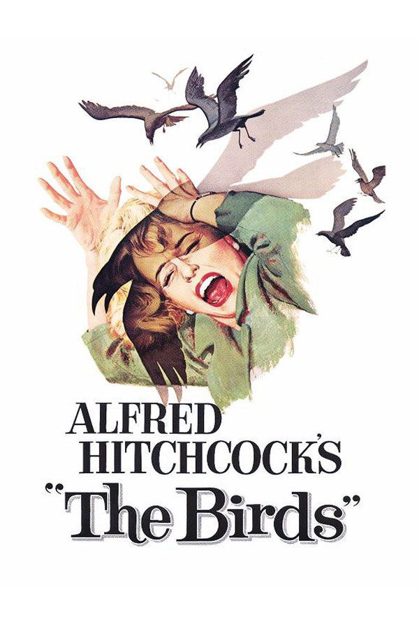 Ptáci online