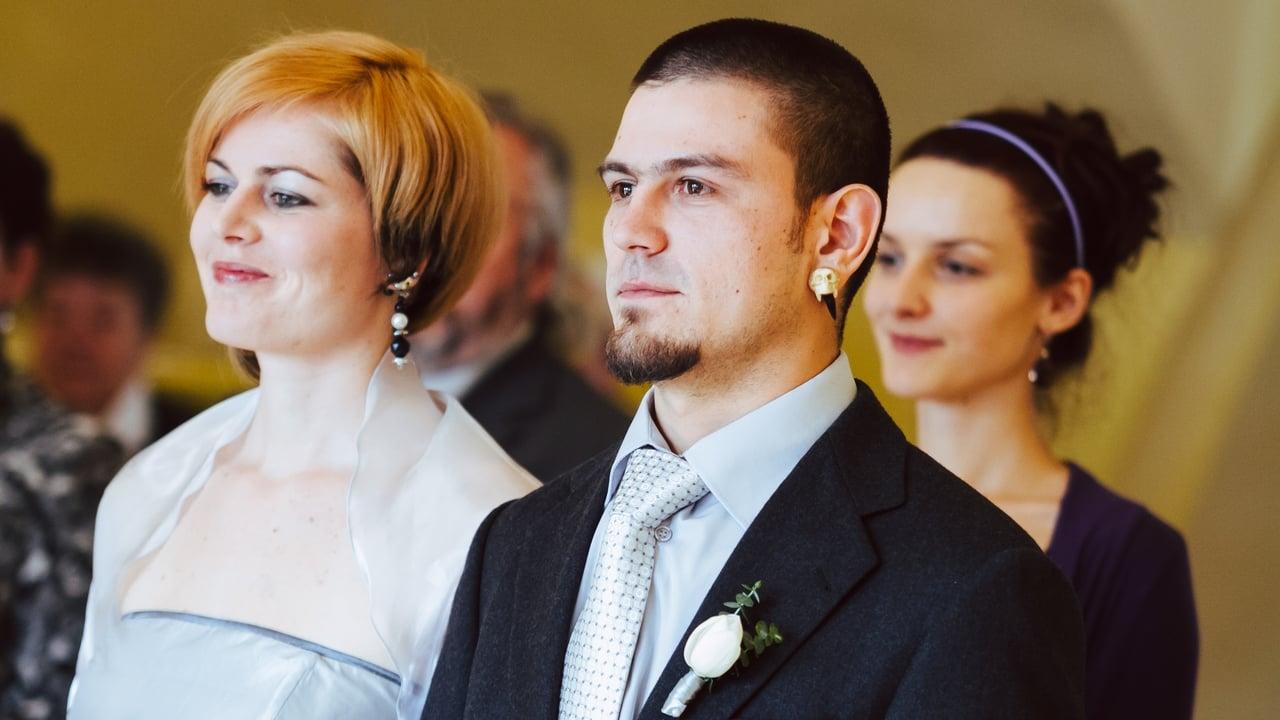 Manželské etudy: Nová generace - Tržby a návštěvnost