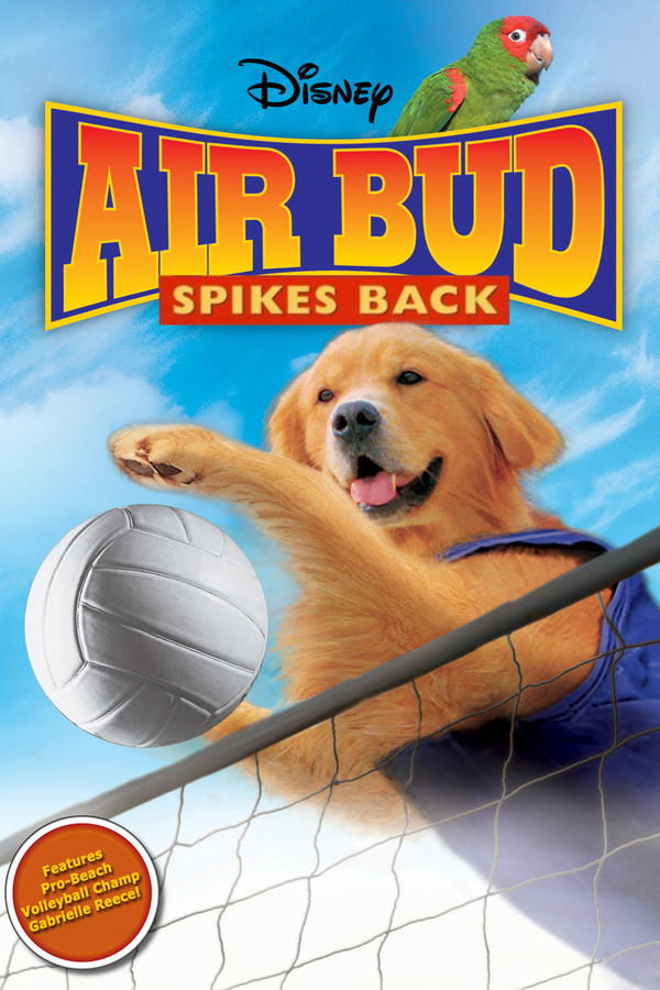 Můj pes Buddy 5 - Volejbalista online