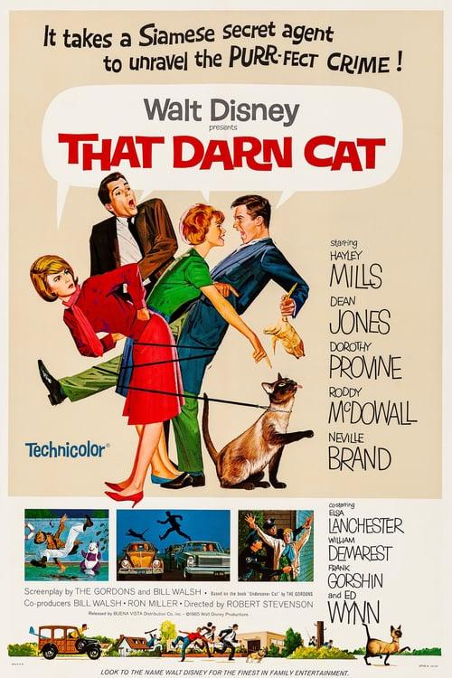 That Darn Cat online