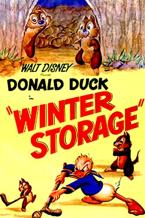 Winter Storage online