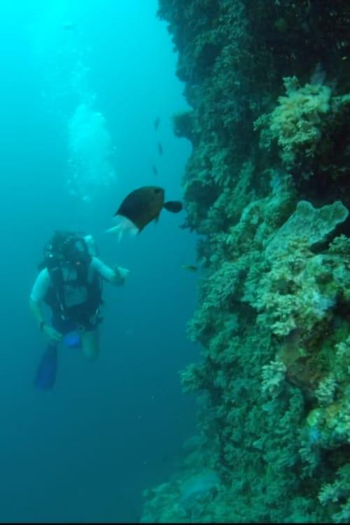 Divy Velkého bariérového útesu online
