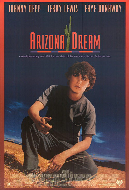 Arizona Dream - Tržby a návštěvnost