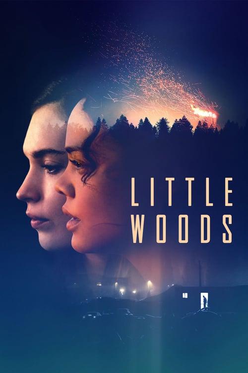 Little Woods online