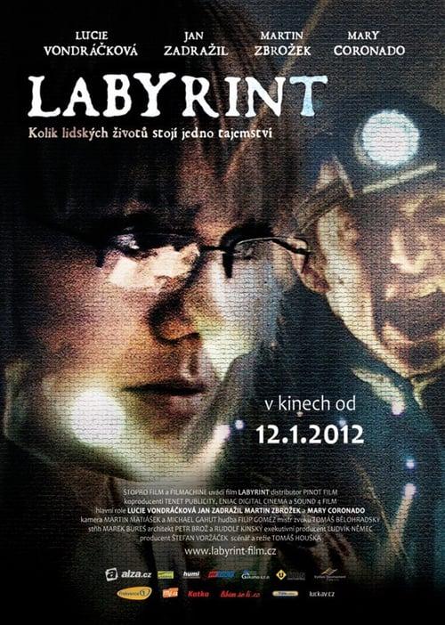 Labyrint - Tržby a návštěvnost