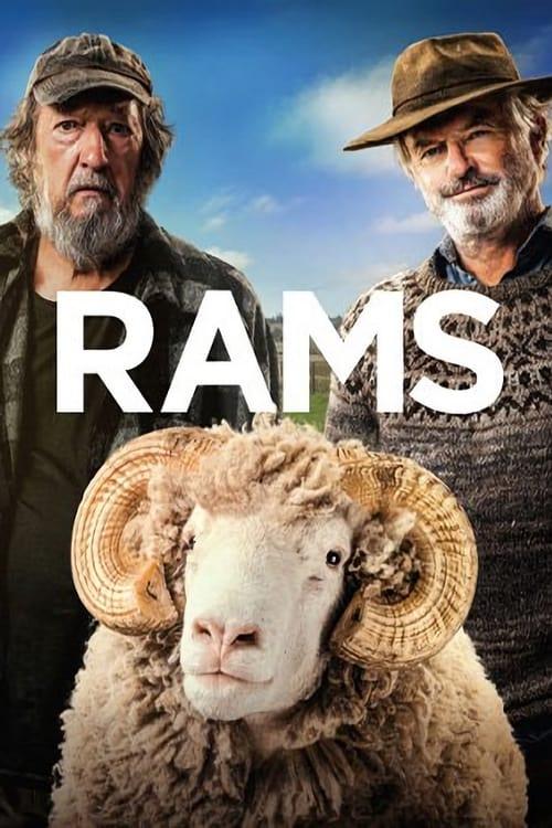 Rams online