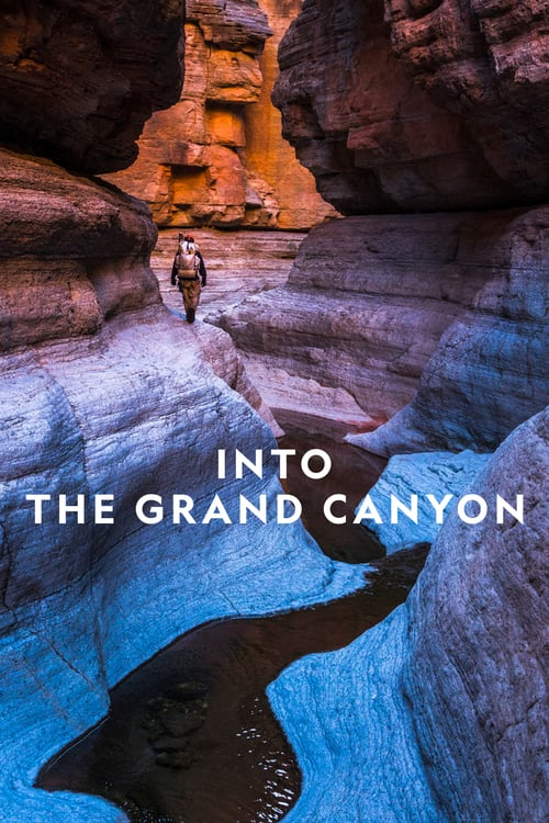 Into the Grand Canyon online