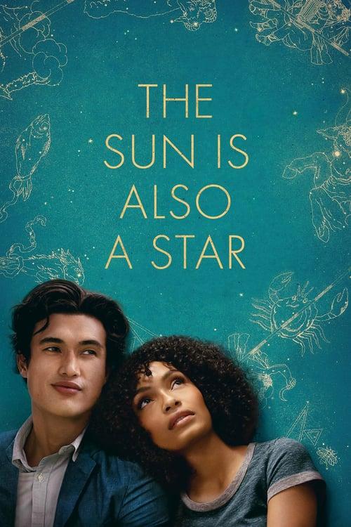 Slunce je také hvězda - Tržby a návštěvnost