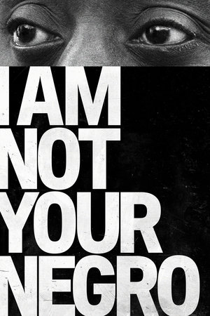 I Am Not Your Negro online