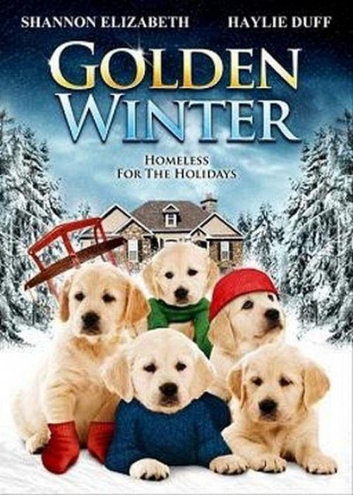 Zlatá zima online
