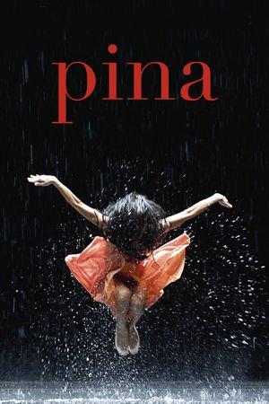 Pina - Tržby a návštěvnost