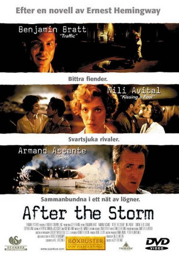 Po bouři online