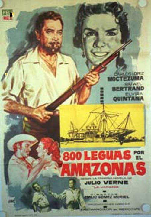 800 mil po Amazonce - Tržby a návštěvnost