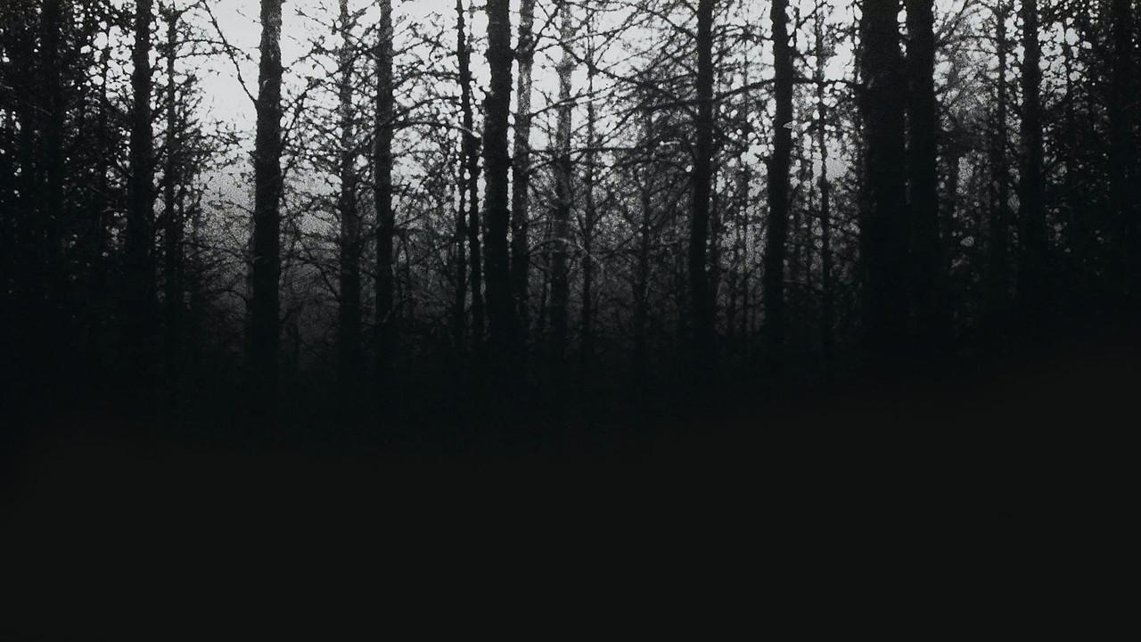 Záhada Blair Witch online