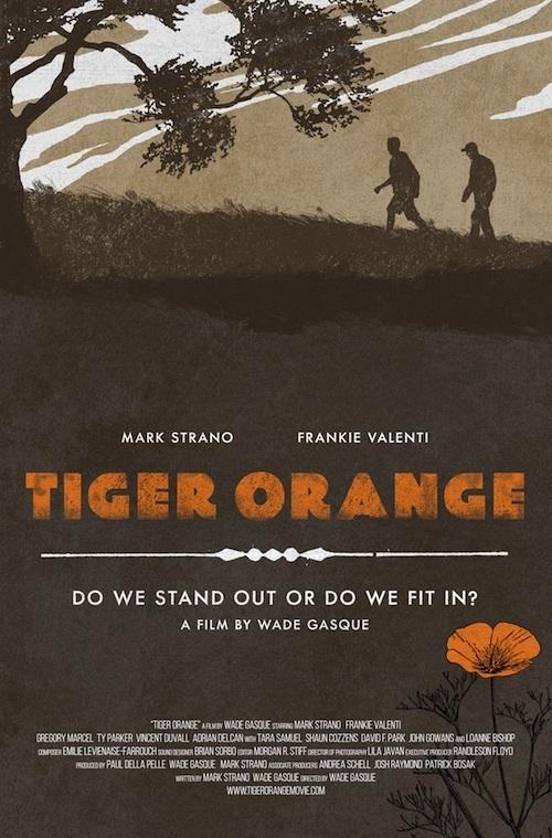 Tygr v akci online
