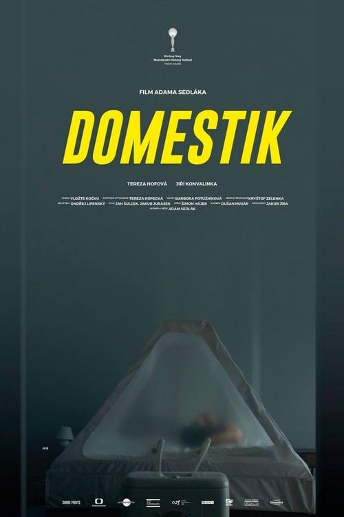 Domestik - Tržby a návštěvnost