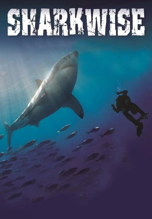 Sharkwise online