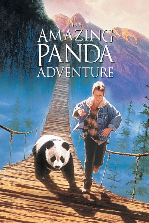 The Amazing Panda Adventure online