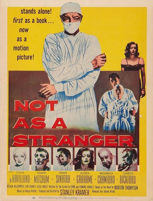 Not As a Stranger online