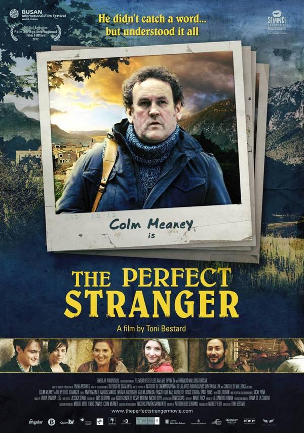 The Perfect Stranger online