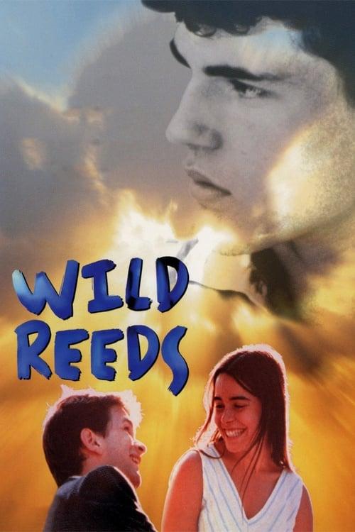 Wild Reeds online
