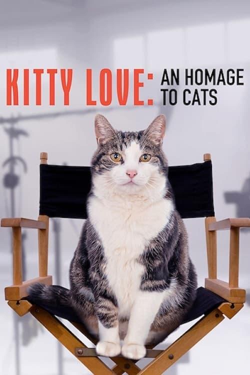 Kitty Love: Pocta kočkám online