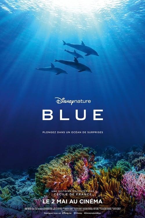 Dolphin Reef online
