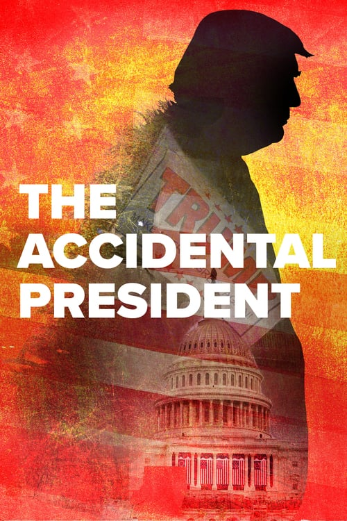 The Accidental President online
