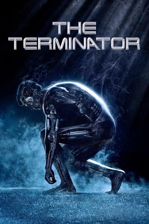 Terminátor 6 online
