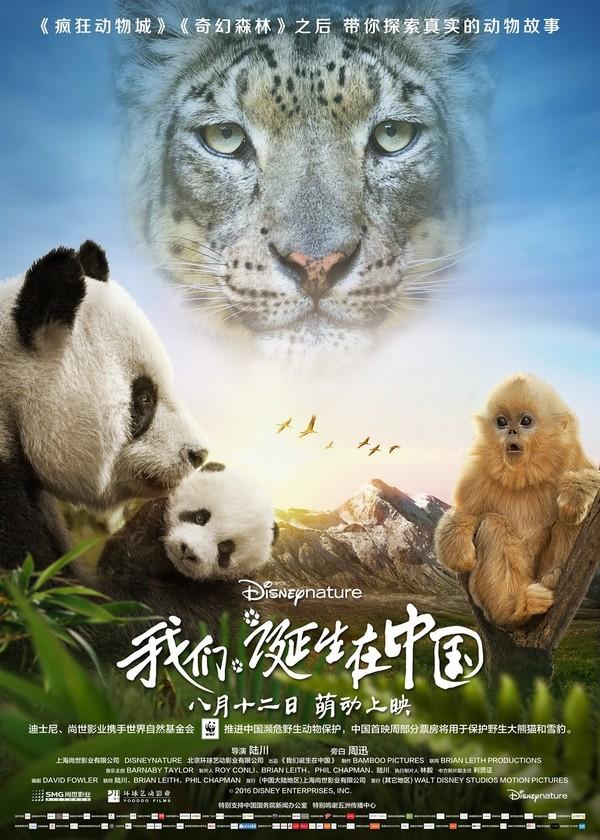 Born in China - Tržby a návštěvnost