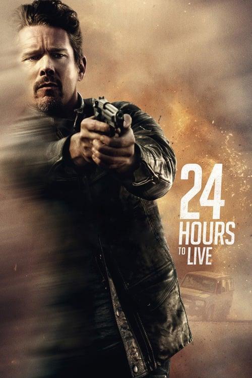 24 hodin k přežití online