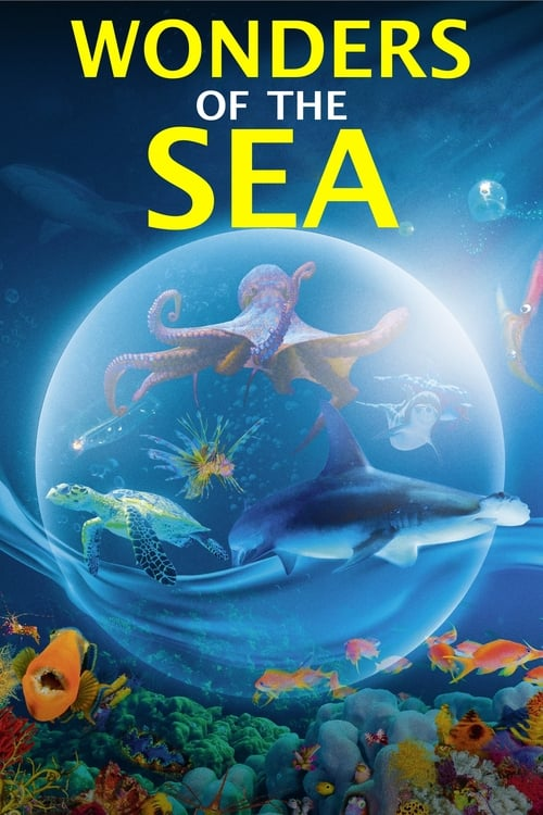 Wonders of the Sea 3D online